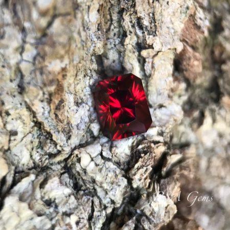 Malawi Garnet